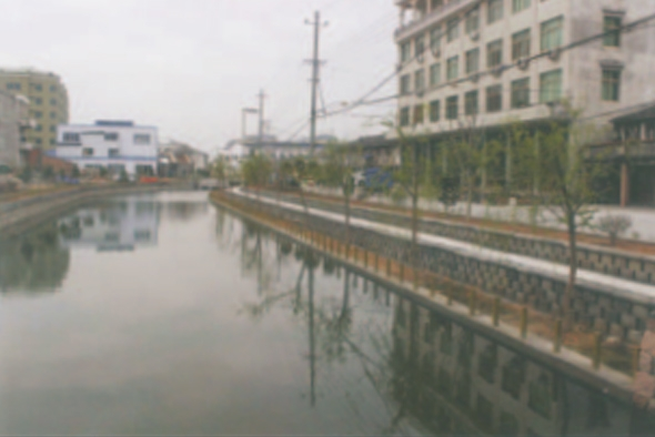 生态护坡工程实景图